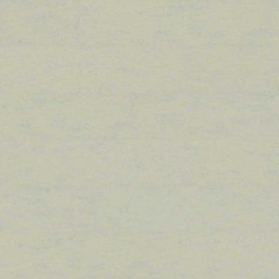ClassicLine Linocolor Certo Lichtgrau HDF-Klickboden - 915x305x10 mm