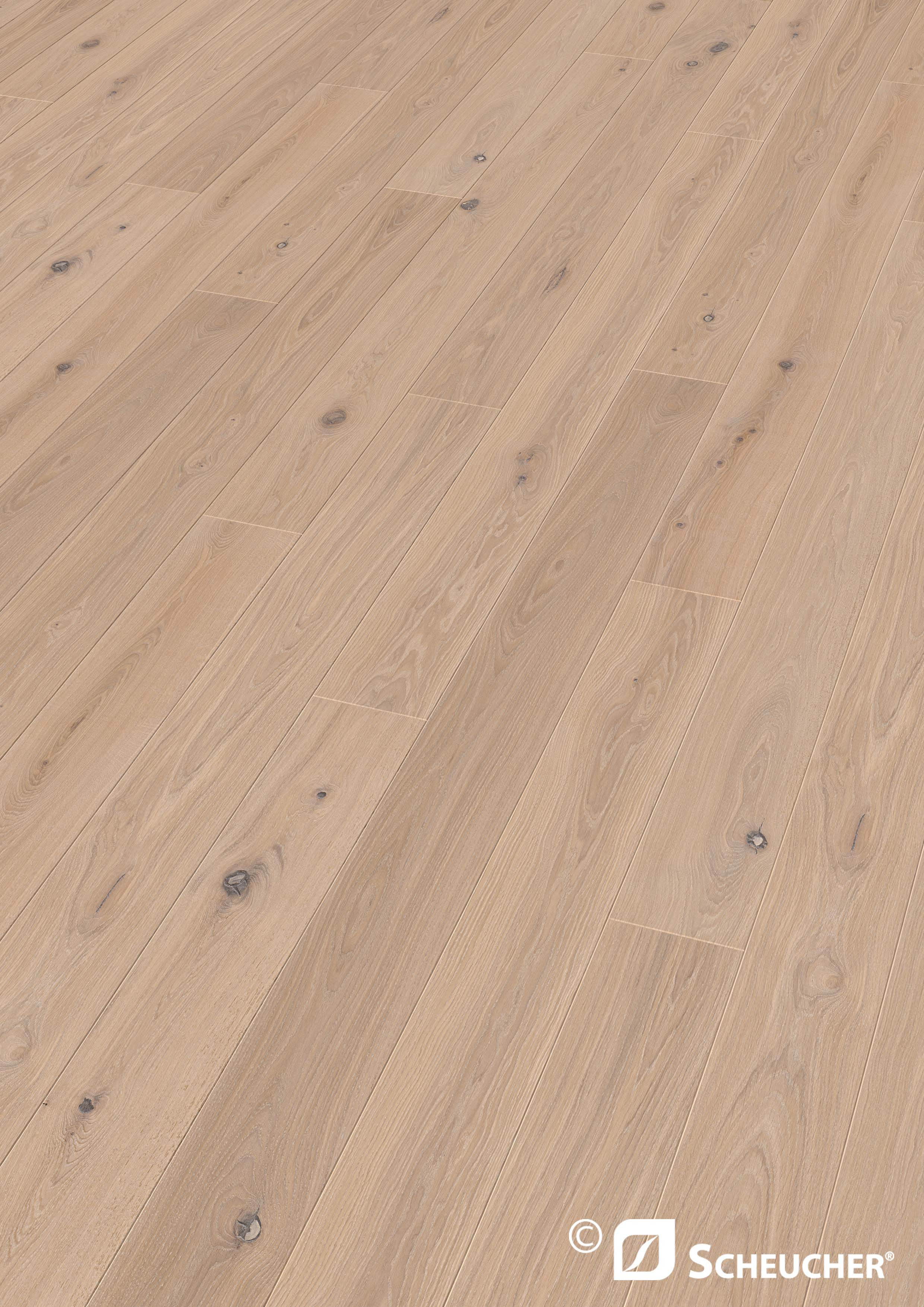 scheucher elevation sylt holzboden. Black Bedroom Furniture Sets. Home Design Ideas