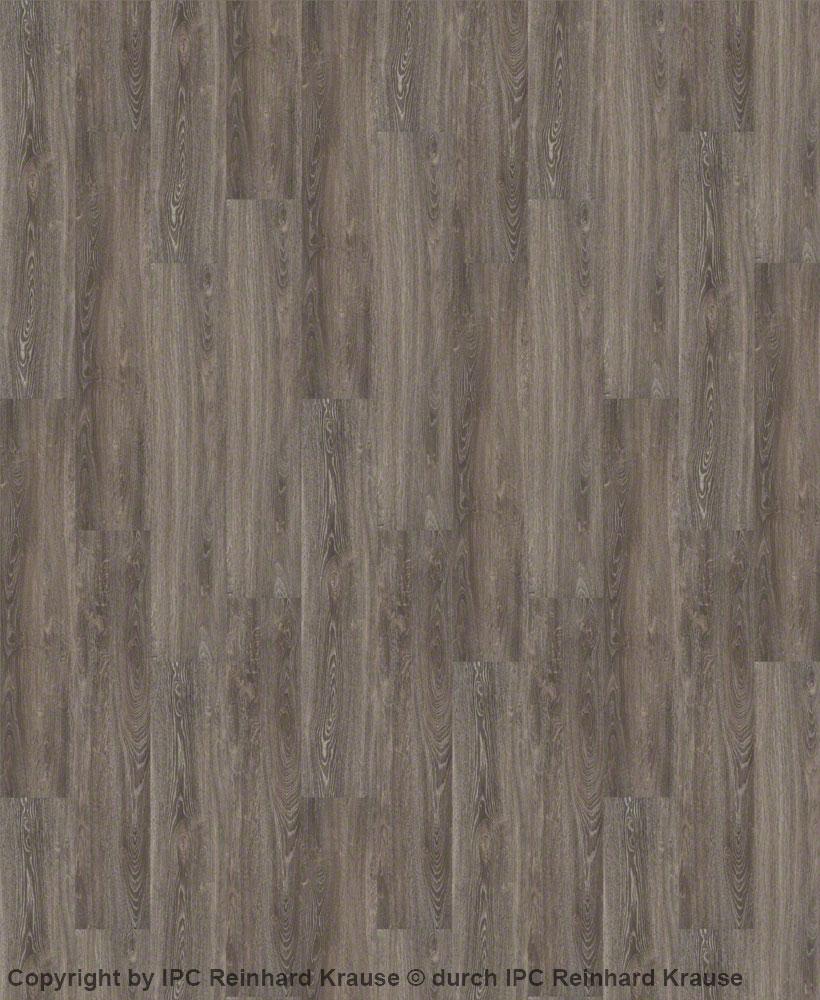 vinyl designboden elegance wilma home eiche xl mittelgrau. Black Bedroom Furniture Sets. Home Design Ideas